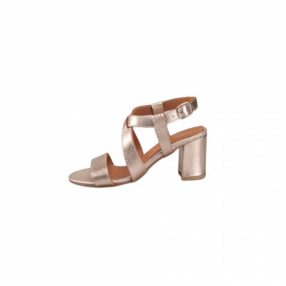STEVE & PAUL 445-342 ROSE GOLD