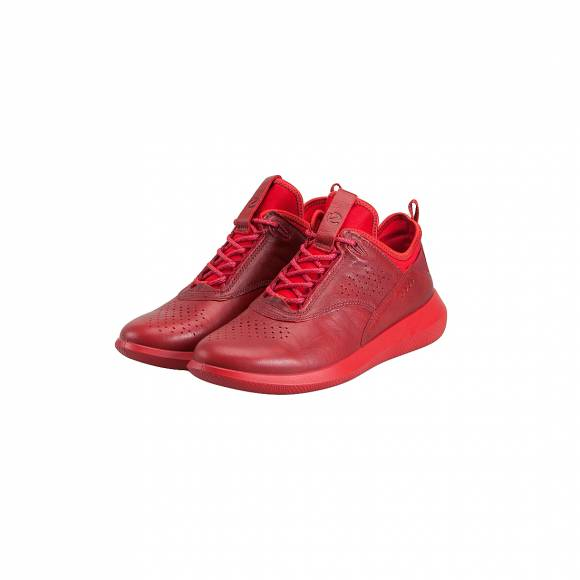 ECCO SCINAPSE 450503 01466 CHILI RED